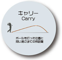 キャリー ボールを打った位置と同じ高さまでの飛距離